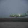 Airbus А-320 S7 Airlines — newsvl.ru